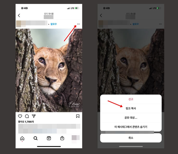 How to download Instagram photos 6